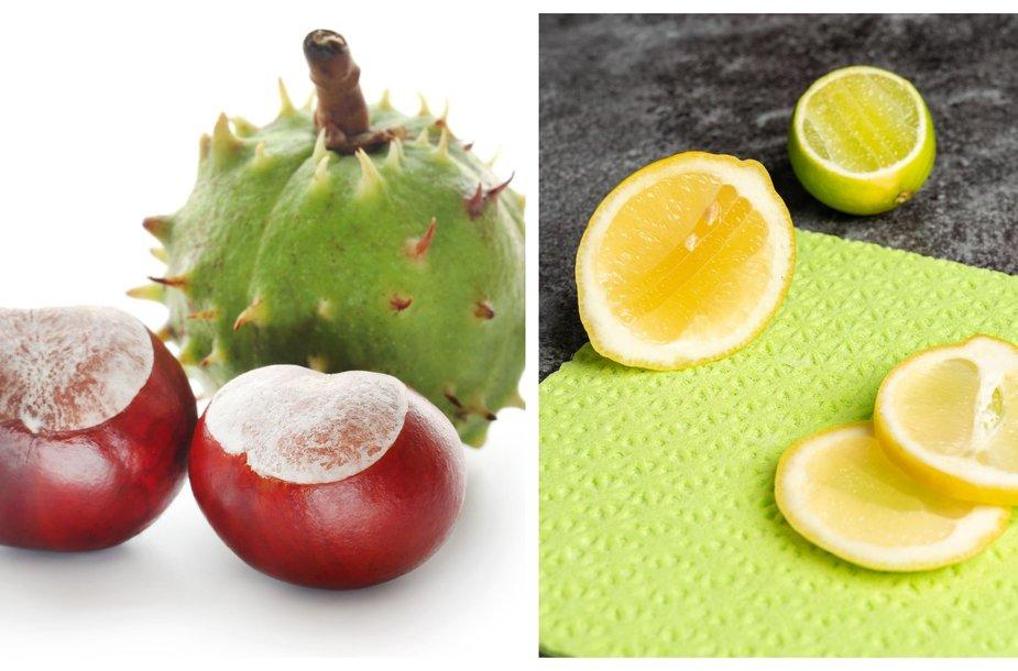 kastonai-ir-citrinos-naturalios-valymo-ir-skalbimo-priemones-5f2d1351eb6d7.jpg